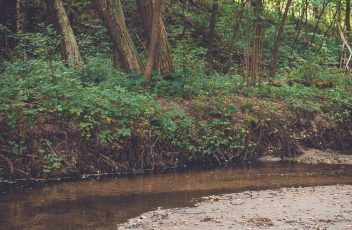 rieses-upelis